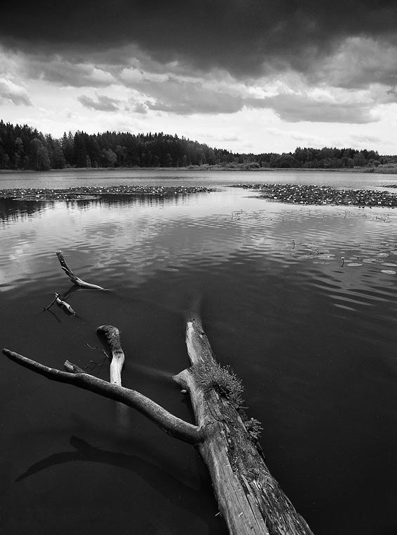 Mill Lake / Mlýnský rybník