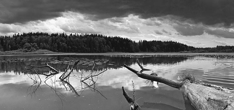 Mill Lake II / Mlýnský rybník II