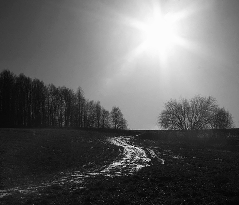 Early Spring / Předjaří