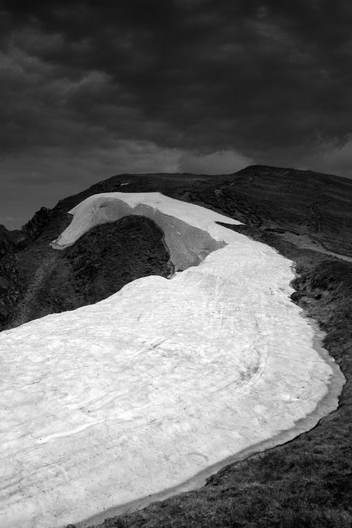Ice Dragon / Ledový drak