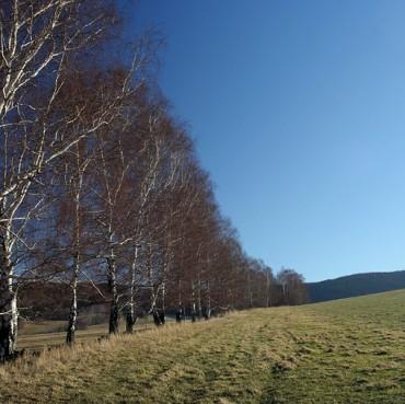 Jeseniky-Hillsides