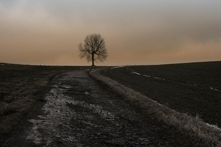 Old Blacktop / Stará asfaltka