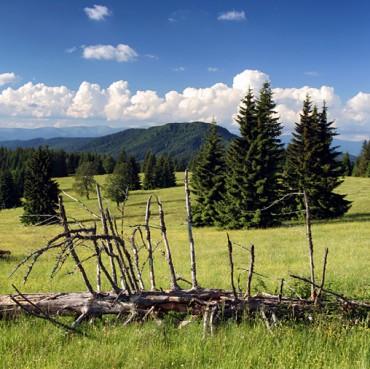 veporske-hills