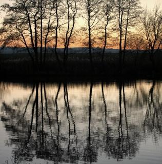 Autumn Pond / Podzimní rybník