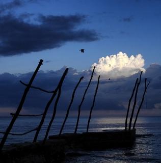 Bašanija Coast (Istria)