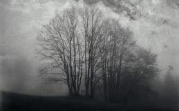 Dream in Black and White / Černobílej sen