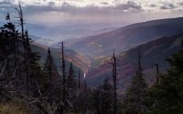 Jeseníky – Divoký potok