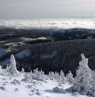 November in the Mountains / Listopad v Krkonoších