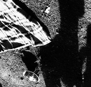 Shadow Dog / Stínovej bobik