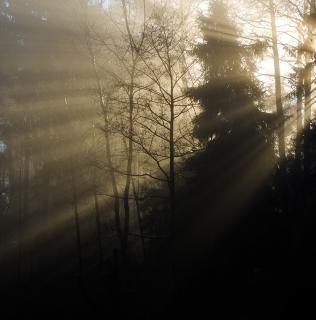 Side Light / Boční světlo