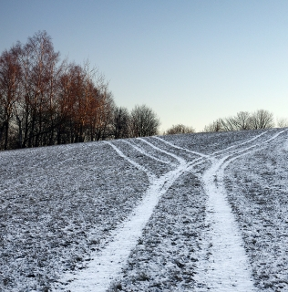 The Road Divided / Cesta se rozděluje