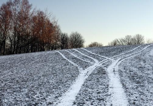 The Road Divided / Cesta se rozděluje