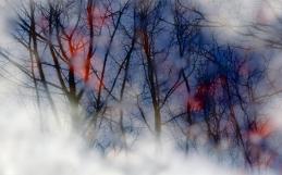 Winter Mirror / Zimní zrcadlo