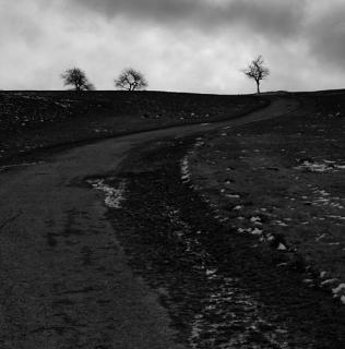 Dark Way / Temná cesta