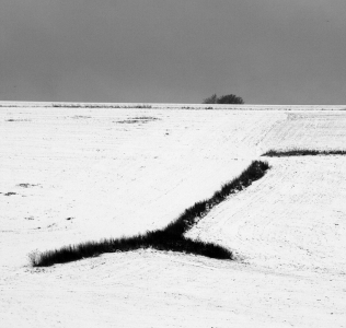 Landscape Artefakt / Krajinný artefakt