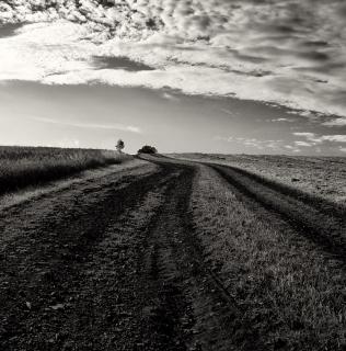Roads / Cesty