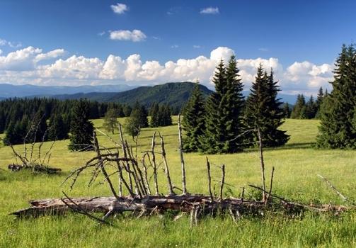 Veporske Highlands / Veporské Vrchy